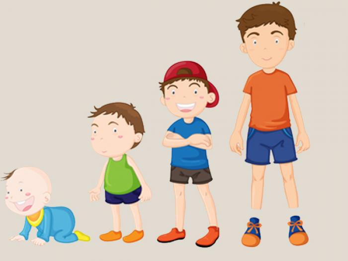 Các giai đoạn phát triển của trẻ và chế độ dinh dưỡng phù hợp